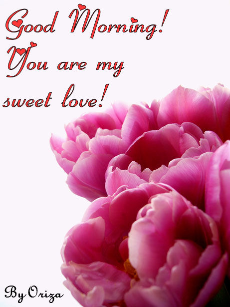 good morning love you are my sweet love